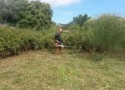 Cortafuegos+desbroce+terrenos+bosques