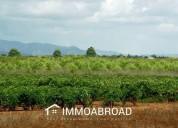 Excelente terrenos, parcelas en venta en algaida: 1 hab., 280 m²